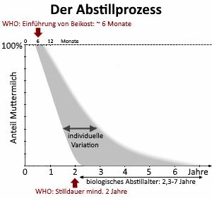 Grafik Abstillprozess